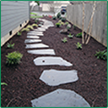 Stone Walkway and Plant Landscaping
