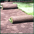 Sod and Blended Soil
